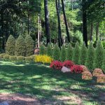 Acworth GA lawn care